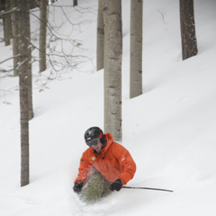 Gliding through the trees on a powder day at Sipapu Resort