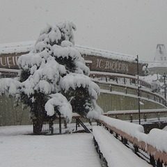 Fresh snow in Baqueira Beret. Nov. 27, 2012
