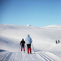 Haukelifjell - langrenn - ©Haukelifjell Skisenter