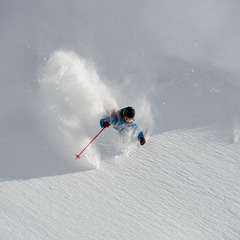 Sammo is a specialist in finding the untracked. Feb 24 was one of the three deepest days of the winter. - ©Lee Cohen