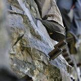 Klettersteig Reinhard Schiestl | Burgsteinwand Ötztal - © bergleben.de/Sebastian Lindemeyer
