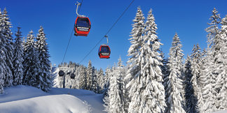 Die größten Skigebiete in Deutschland: Die Top 10 mit den meisten Pistenkilometern ©Norbert Eisele-Hein