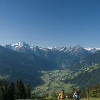 Wandern am Zellberg - ©Zillertal Tourismus | Bernd Ritschel