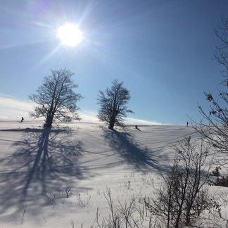 Slunečná lyžovačka na Donovalech - © PARK SNOW Donovaly