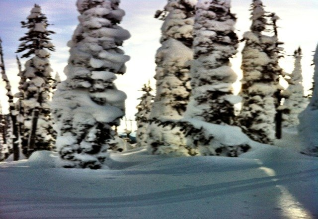 all steez in te back country, but respect the avalanche dangers.
