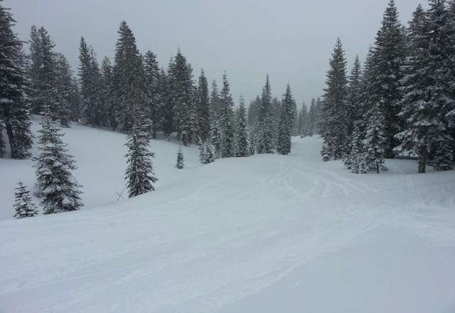Powder day today! Wet & heavy but extra gnarly