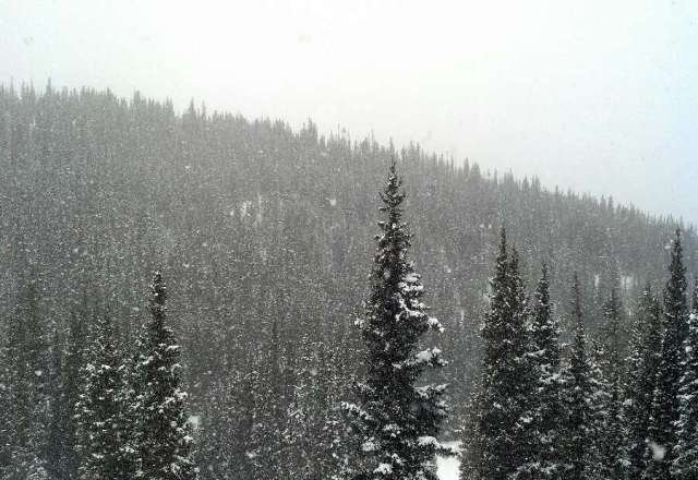 great day on copper, snow fell in the afternoon, going to be nice tomorrow