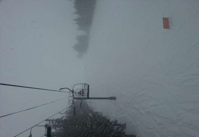 dumping here all day....whiteout up top but powder everywhere.