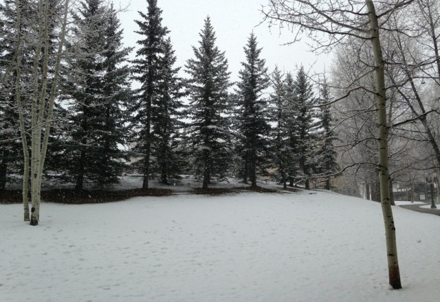 It's snowing... has been for the past coiple of hours! Beautiful!