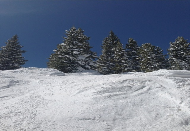 great snow and powder on every run till about 1pm then got really slushy and tracked out...still an amazing day everyone was stoked to be there