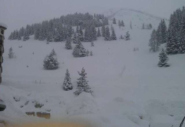 so much new snow,great condition but foggy weather