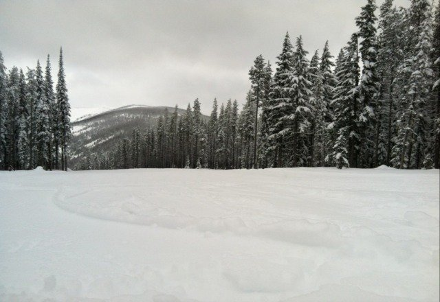 Soft packed powder with stashes of fresh still out there. Trees off chair 2 have the most.