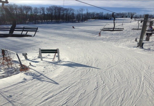 sunny and groomed very well. Fun Times at Boyne... Go Green Go White!????