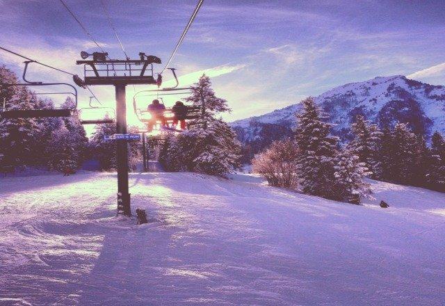 Sundance.