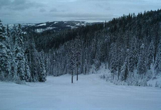 Opening day, off Tamarack. Snows good enough for fun, $25 lift tickets for opening weekend.