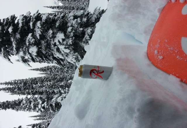 great day to drink Rainer in the foot hills of the mtn