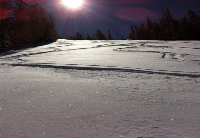 "34"" of fresh dry powder, blue skies and no crowd on sunday. Awesome."