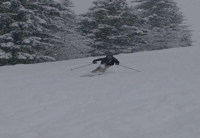 snowed heavily for 35 hours. great powder off piste at higher elevations a little heavy lower down (below 1300m) Pistes are excelled.