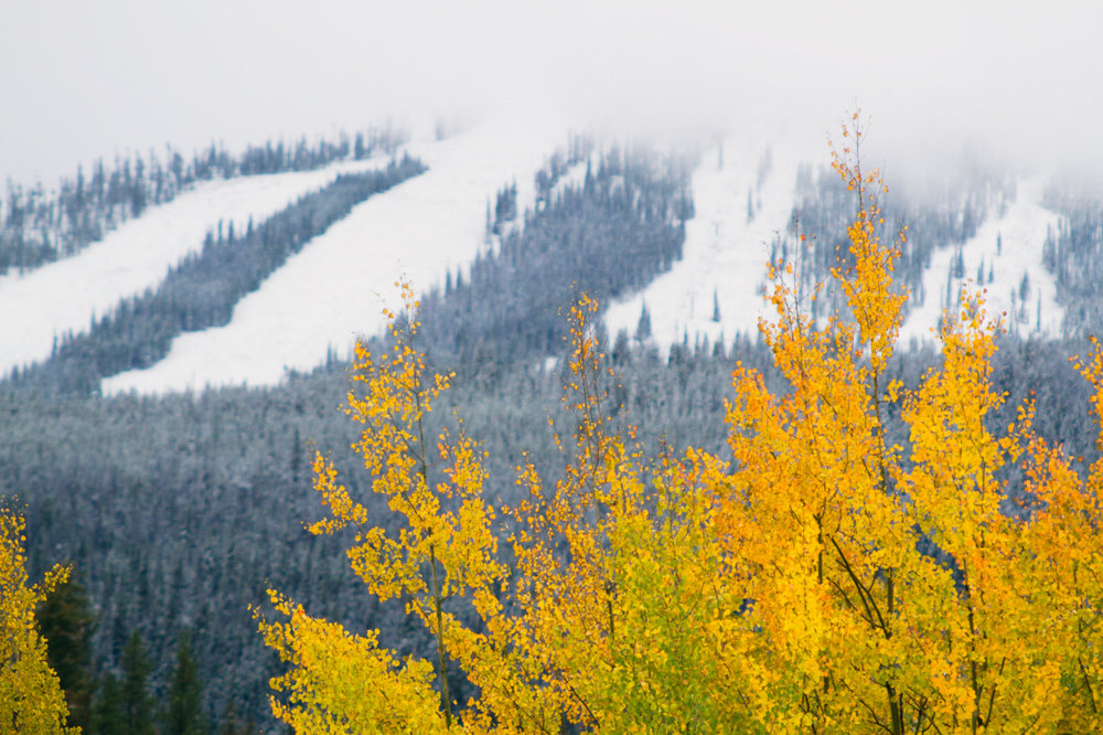 Fall and winter at the same time for Winter Park - © Brad Torchia