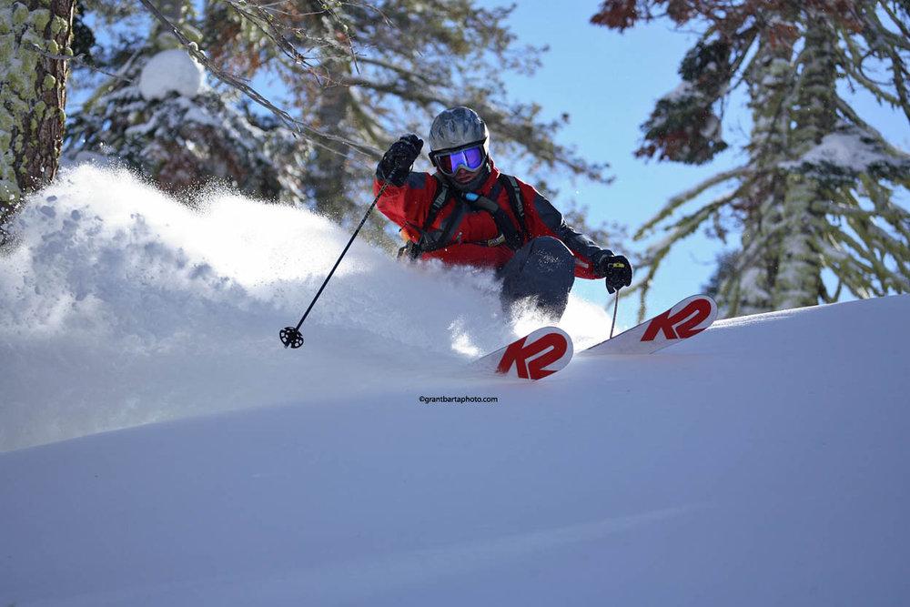 A skier avoids a tree and enjoys new powder at Sugar Bowl Ski Resort, California