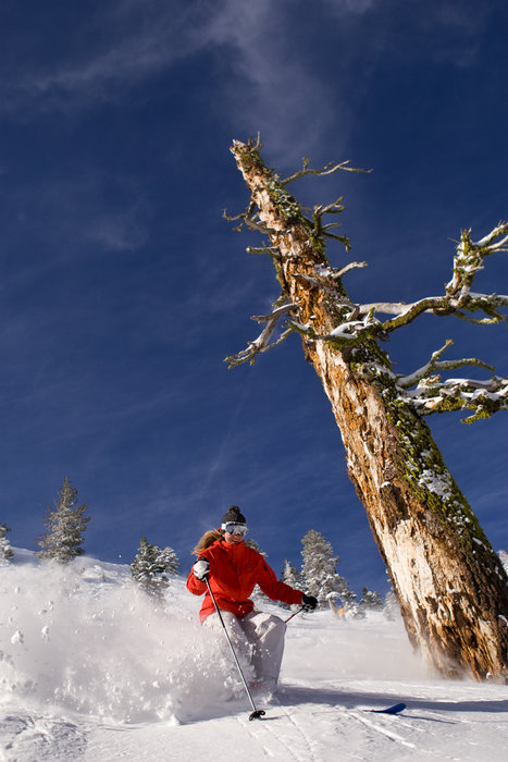 This skier finds powder in the backcountry of Alpine Meadows, California