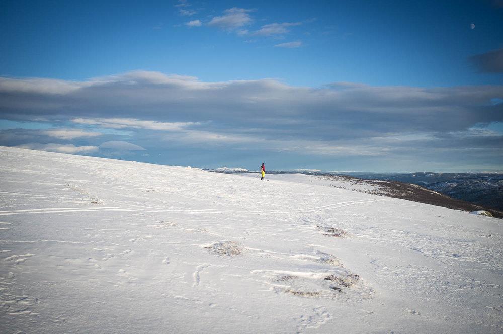 Gutta på telemark kunne gå for pudder litt lenger bort enn oss på brett. - © Eirik Aspaas