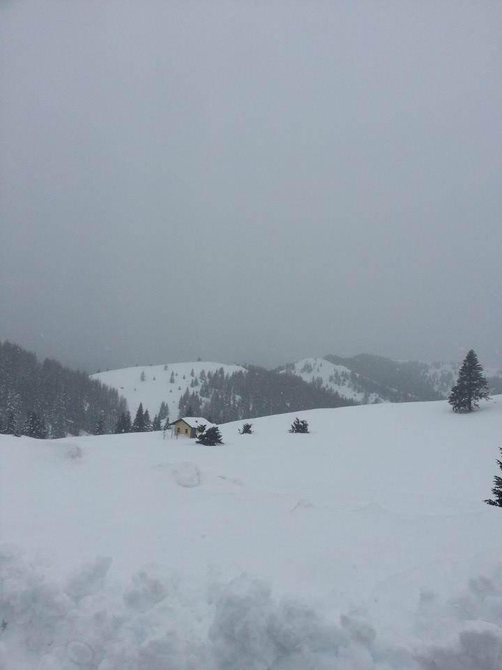 Folgaria - Neve fresca 17 Gen 14