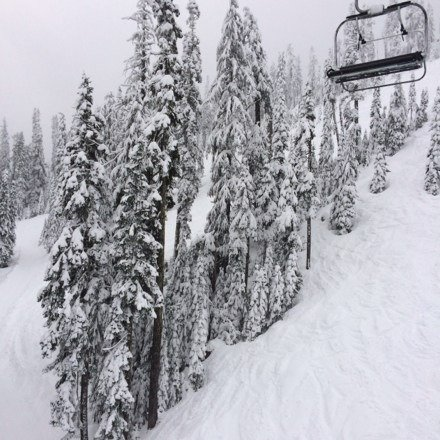 Today was great. Snowing all day. Foggy but ok.