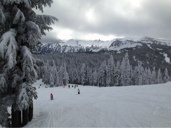 Great day on 2/1.  Lots of powder stashes, cold, and no wind.  Hard to beat.  Love White Pass!