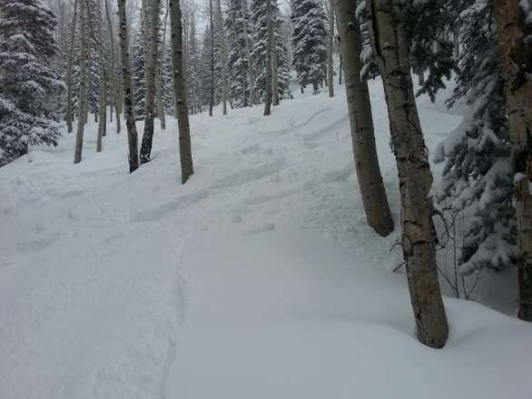 Friday's freshies!!  fun day on west end