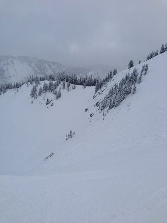 Snowing most the day yesterday and it's snowing now. Lite at the bottom. Dry air = good powder like snow.