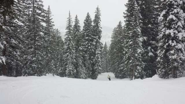Great day at Brighton.  No lines,  fun people and excellent powder.