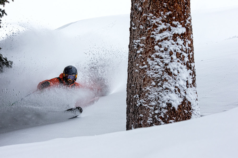 David Moszynski winds through the amazing glades on Highlands. - © Liam Doran
