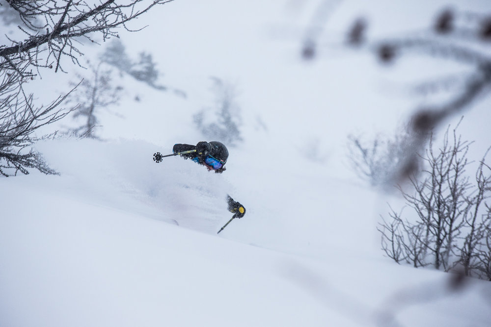 Storm skiing in the Larch forests at Lake Louise. Skier: Ben Evely - © Liam Doran