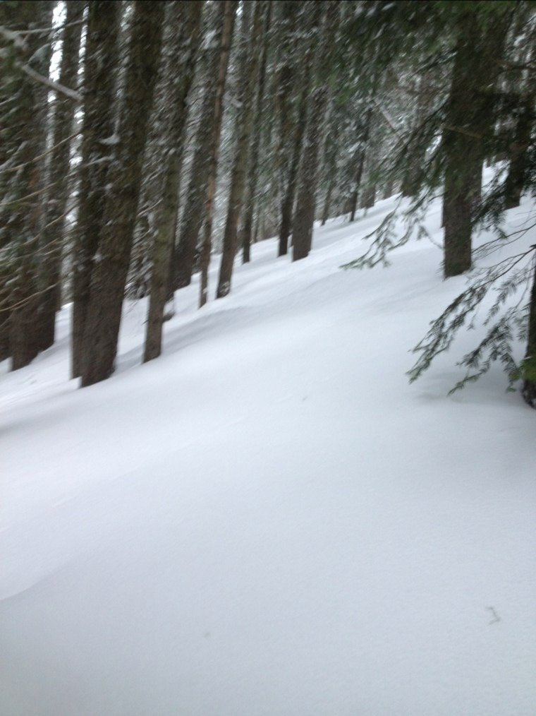 most excellent pow...dry, fluffies all day and so much untouched & deep stashes remain. snowed all day, and still snowing when i left