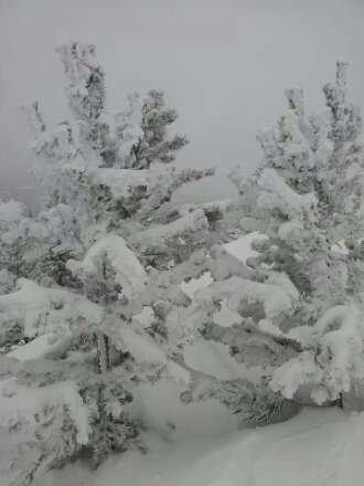 trop de la bonne neige ! c'est un plaisir de skier !