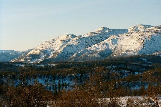 Rauland Hogfjellshotell