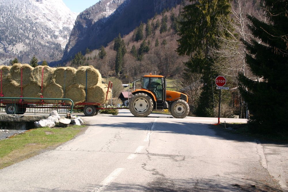 Farm traffic - ©Sal @ Skiinfo Lounge
