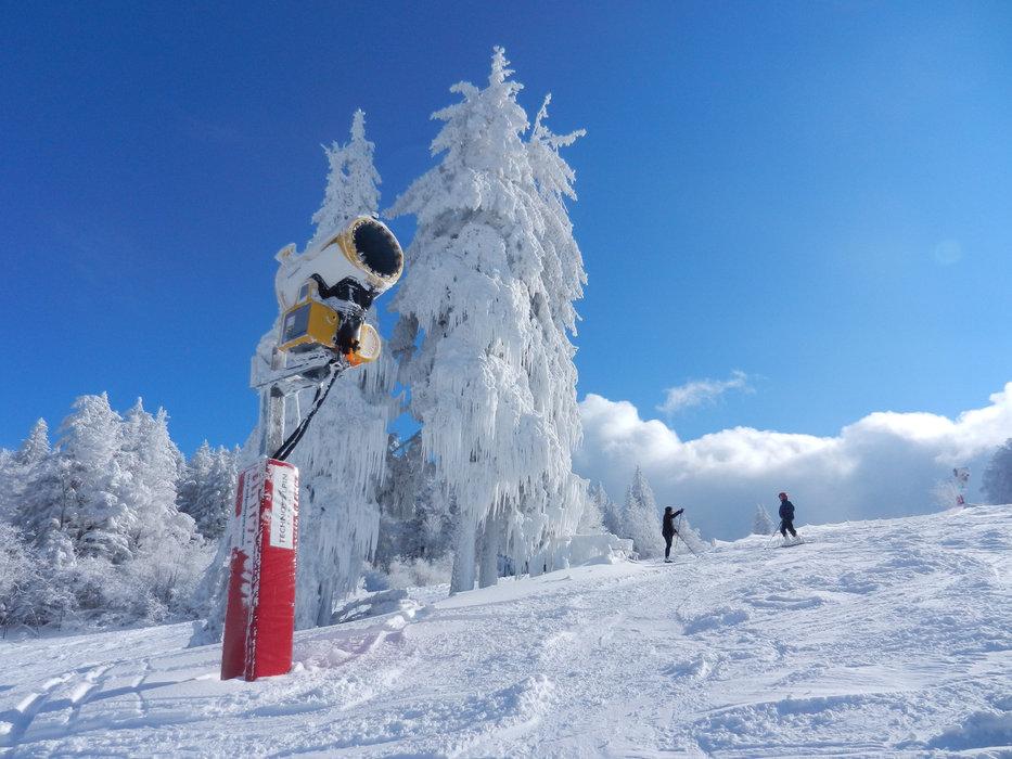 Plus de 75% des 50 hectares du domaine skiable du Champ du feu peuvent être enneigés grâce au réseau de canons à neige.