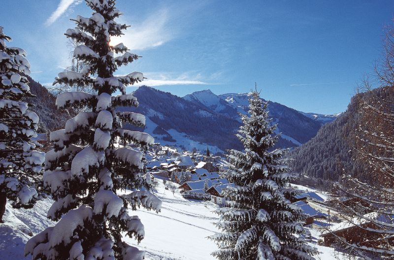 Chatel village through trees