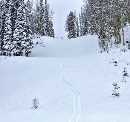 Good turns on Ajax a week before opening day. This was off Kristy's. 12