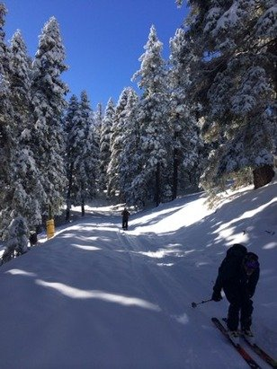 Dec. 17th.  Unbelievable!  Hadn't skied Holiday Hill in 50 years.  Fabulous fresh light fluffy dry powder. Great skiing, great down to earth resort w/ super friendly folks
