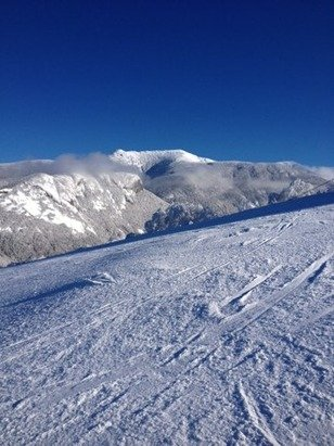 Amazing conditions on Saturday.  Mittersill was eeehh but glad to see its open 78 out of 81 trails, no lines.