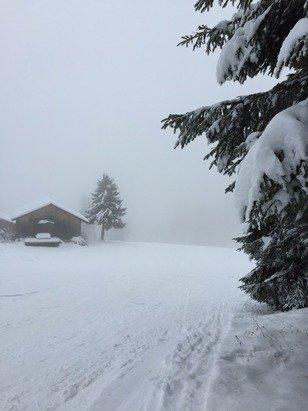 Piste Les Blanchots, peu de visibilité aujourd'hui et neige insuffisante . Le seul télésiège du domaine ne fonctionne pas !!