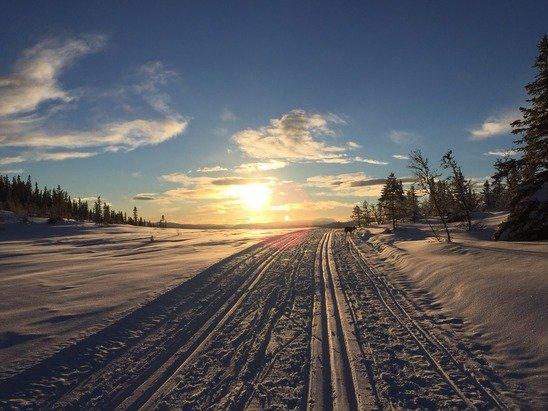 Nypreparert på Midtre Djupsjøløype idag. Fineste forhold i 2015.