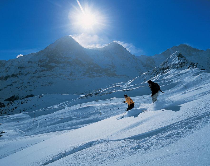 Freeriden am Maennlichen. Eiger, Moench und Jungfrau im Hintergrund - © Switzerland Tourism/Christof Sonderegger