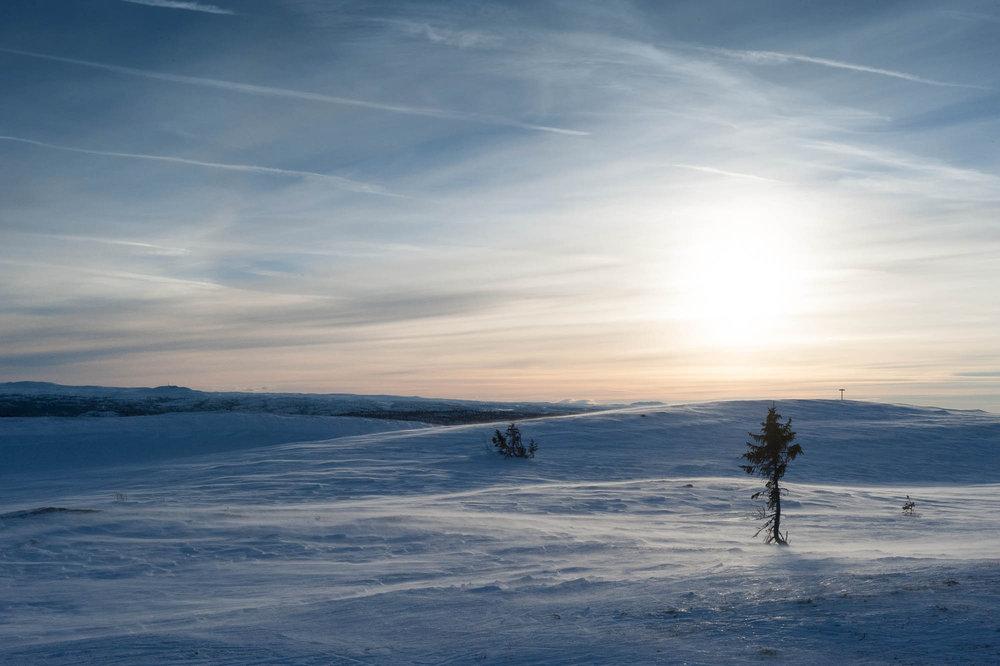 Toppen på Ål, der du forøvrig blir kjørt opp gratis innfridde våre ønsker. - © Eirik Aspaas