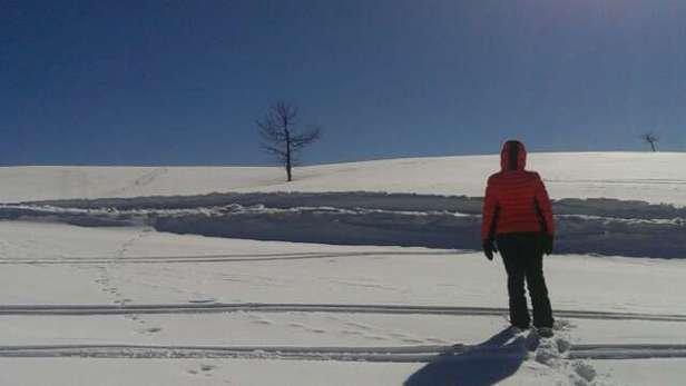 De la neige et du soleil