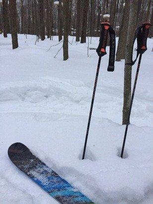 Good powder in the trees. Main trails are hard packed but not ice even at the end of the night. A little fresh snow wouldn't hurt though. Worth the trip for sure but terrain park needs to revert to what it was last year- Yes I know they moved it.