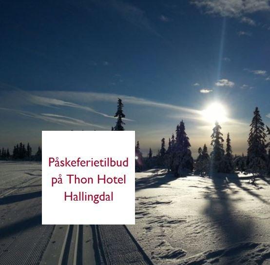 Thon Hotel Hallingdal - © Ål